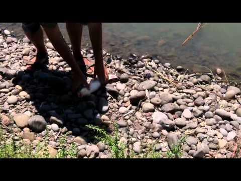 Pond Fishing In Oregon