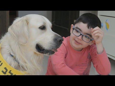 כלב עזר לילדים הסובלים מניוון שרירים