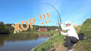 Рыбалка на закидушку с колокольчиком