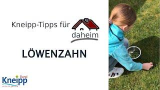 Video Löwenzahn (Superfood aus dem Garten) - Kneipp-Tipps für daheim Teil 4 abspielen