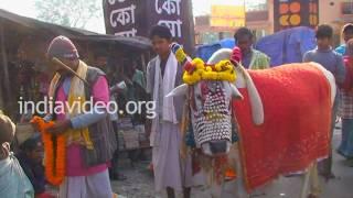 Sacred Bull, Kolkata, West Bengal