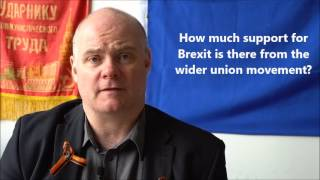 Steve Hedley (RMT) on why leftists should vote leave