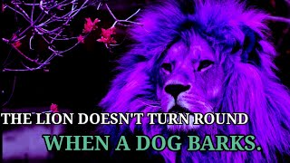🔥Lion attitude quotes🔥 || Motivational life quotes for success || Deep Meaningful Quotes