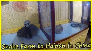 Snake Farm to Hainan in China Review 2020. Snake Village in Sanya. Travel ti China 2020