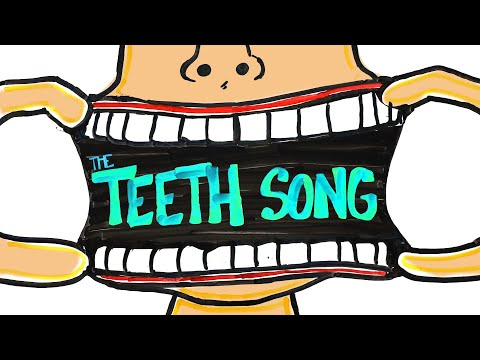Learn Every Tooth with This Song