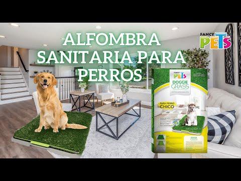 Doggie Grass Alfombra Sanitaria para Perros | Fancy Pets