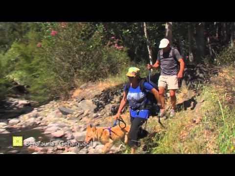 Der Große Wanderweg Málagas. Etappe 27: Benalauría – Genalguacil (Deutsch)
