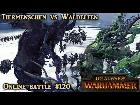 Zwei Monster und ein Baum - Tiermenschen vs Waldelfen - Total War: Warhammer Online #120 [Deutsch]