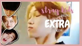 stray kids being extra kids