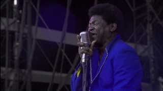 "Charles Bradley - ""You Put The Flame On It"" Live at the Main Square Festival - Arras, France"