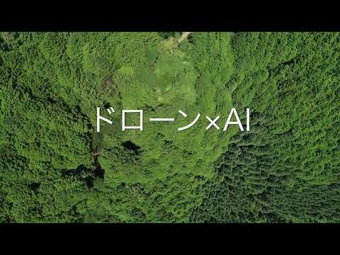 森林資源の見える化サービス