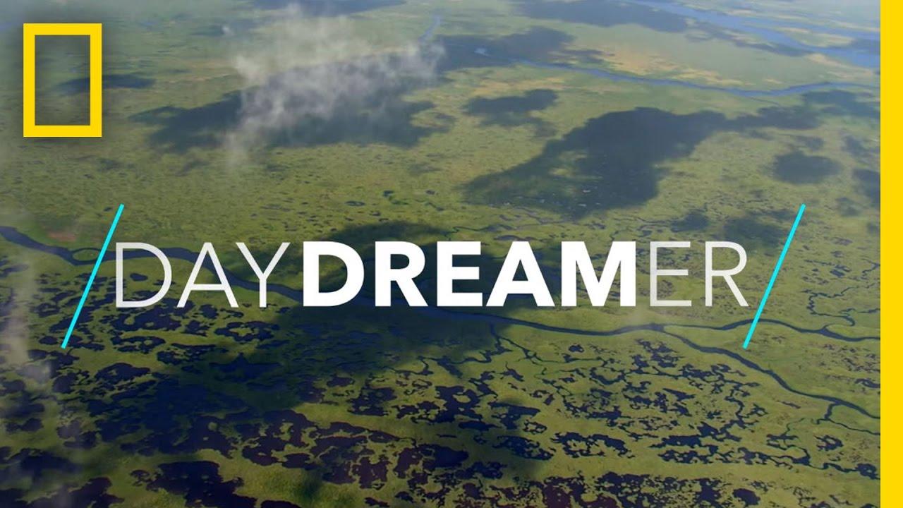 Playful Manatees, Mangrove Kayaking, and More | National Geographic thumbnail