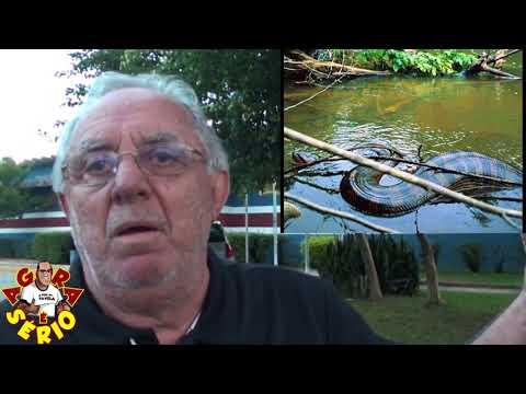 Chicão confirma Sucuri nas águas de Juquitiba