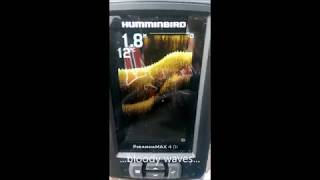 Эхолот humminbird fishinbuddy max di