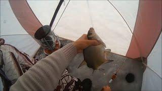 Ловля леща на иркутском водохранилище