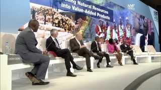 NYFA 2014 – Transforming Natural Resources Into Value Added Resources [en]