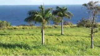 preview picture of video 'Oceanfront Subdivision-Umauma Falls Estates, Hakalau, HI 967'