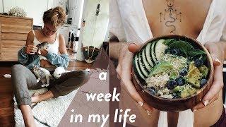 Vlog 1: A Week In My Life.