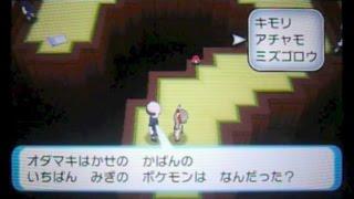 ポケモンORAS-69「カラクリ屋敷5回目クイズ編110番道路」