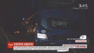 Через ДТП фури на Миколаївщині тисячі курей повтікали у поля