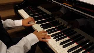 Moonlight Sonata 1st Movement Beethoven