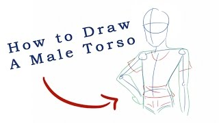 How To Draw A Male Torso
