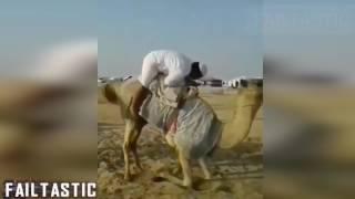 Arabic Funny Video Collection || Failtastic 2017