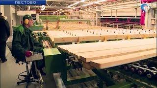 Новая жизнь начинается у пестовского лесоперерабатывающего предприятия и средней школы