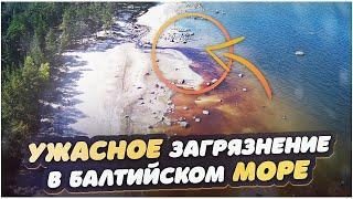 Загрязнение в Балтийском море | Экологическая проблема | Аэросъемка на дрон mjx bugs 20