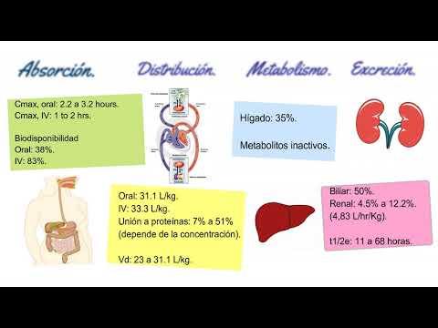 Rimozione della vescica e della prostata effetti del cancro