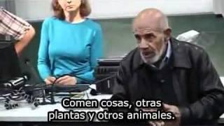 """""""כאב"""" אצל צמחים וסרטן אצל חיות טבעוניות"""