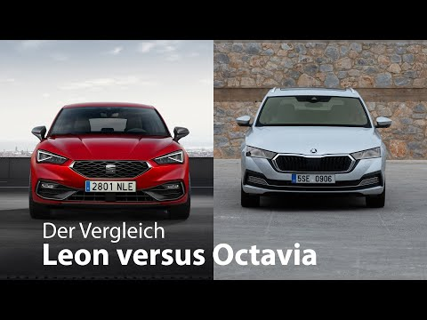 Der Vergleich: Seat Leon vs. Skoda Octavia...und die anderen zwei [4K] - Autophorie