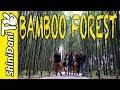Japan Travel Vlog Day 3 - Arashiyama 嵐山 Bamboo Forest Kyoto