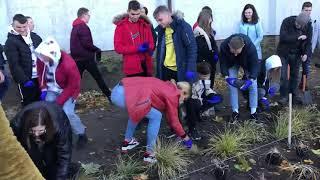 Wideo1: Powstaje ogród deszczowy w Krobi