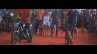 Dog Show At Pala | Kottayam, Kerala