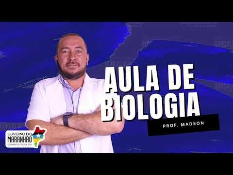 Aula 02 | Introdução à Ecologia - Parte 02 de 03 - BIOLOGIA