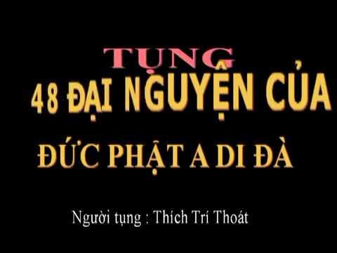 12 Đại nguyện của Đức Phật Dược Sư Lưu Ly (13 lần) - Thầy Thích Trí Thoát tụng (có chữ để tụng theo)