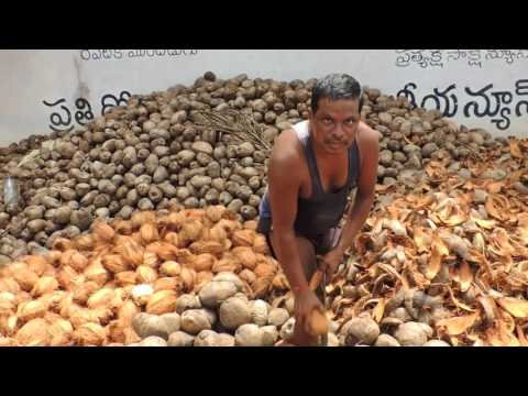 Rutina de peladores de coco