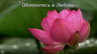 Стань Дождём. Христианские песни. Юрий Морозов.