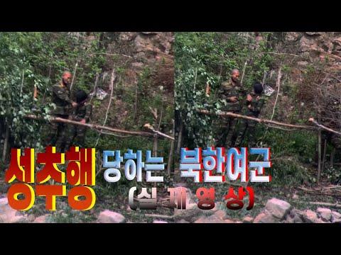 성추행 당하는 북한여군 실제영상 [오늘의 북한]Actual footage of a North Korean female soldier being sexually.