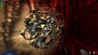 Aliens vs. Predators 2 video