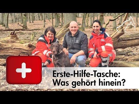 Erste-Hilfe-Tasche für Hunde - Was gehört rein❓ Oli Petszokat fragt nach!