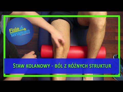 Funkcja biceps