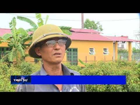 Hiệu quả lò đốt rác thải xã Thanh Hải, huyện Lục Ngạn, tỉnh bắc Giang