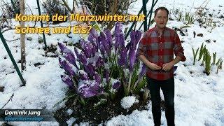 Märzwinter mit Eis und Schnee: Was sagen die aktuellen Vorhersagen? (Mod.: Dominik Jung)