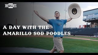 A Day With the Amarillo Sod Poodles