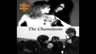 Faith and the Muse - Soul in Insolation (The Chameleons cv)