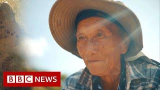 Die Flüchtlinge, die eine Nation ernähren - BBC News
