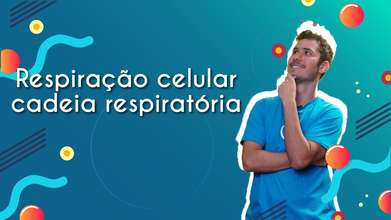 Respiração celular: cadeia respiratória