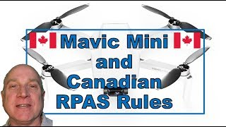 How Does the DJI Mavic Mini Fly Within Canadian RPAS Rules?